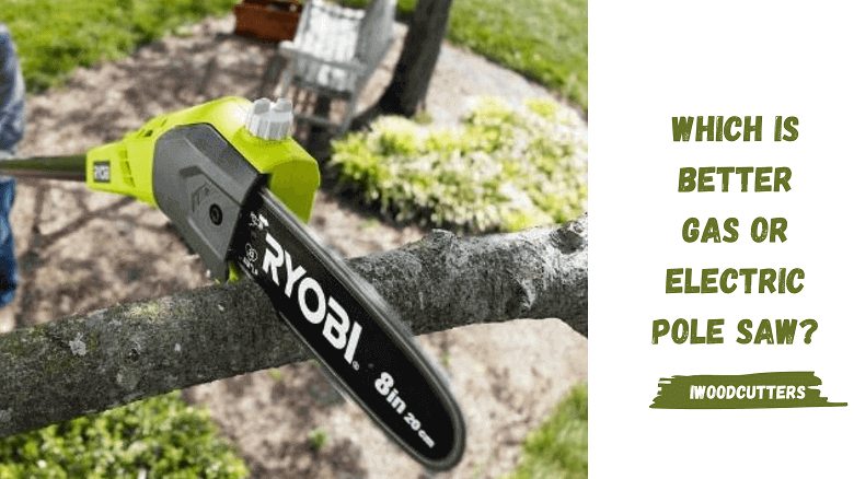 gas powerd pole saw reviews